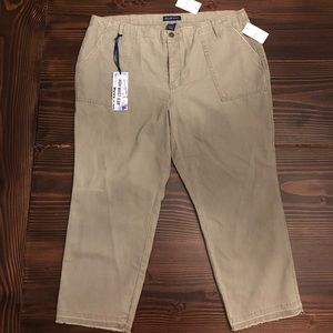 NWT Plus 16 Blue Spice Olive High Waist Crop Pant